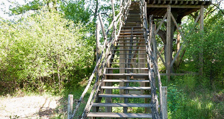Chambre d'hôtes: landes cabanes sauvages à campet-et-lamolère (133458)